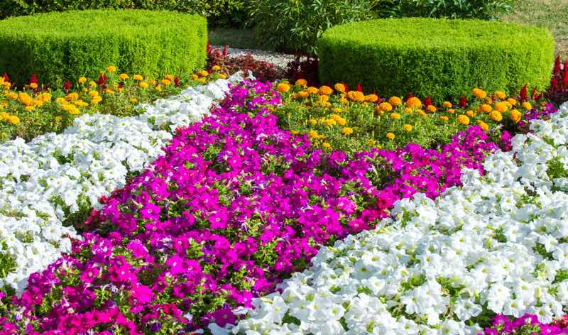 16 Fantastic Flower Garden Ideas You Ll Fall In Love With