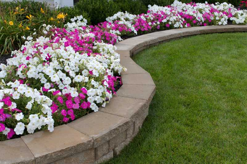 flower garden banks