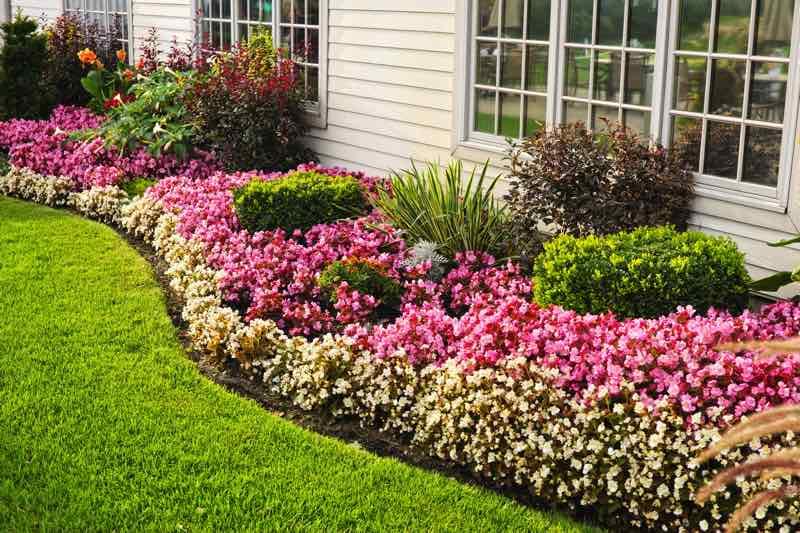 flower garden bed around house