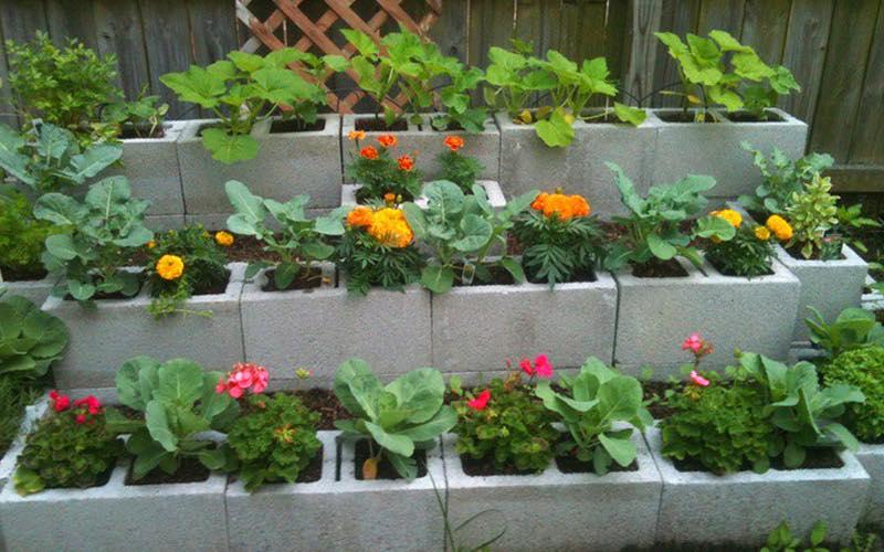 flower garden edging