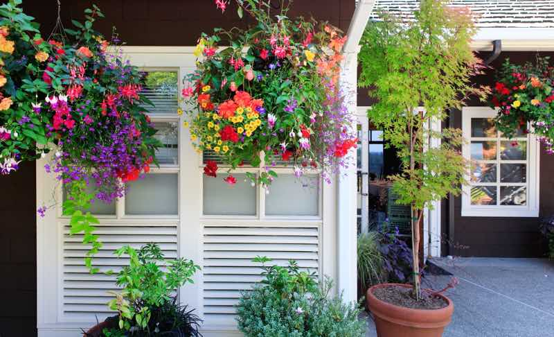 hanging flower garden images