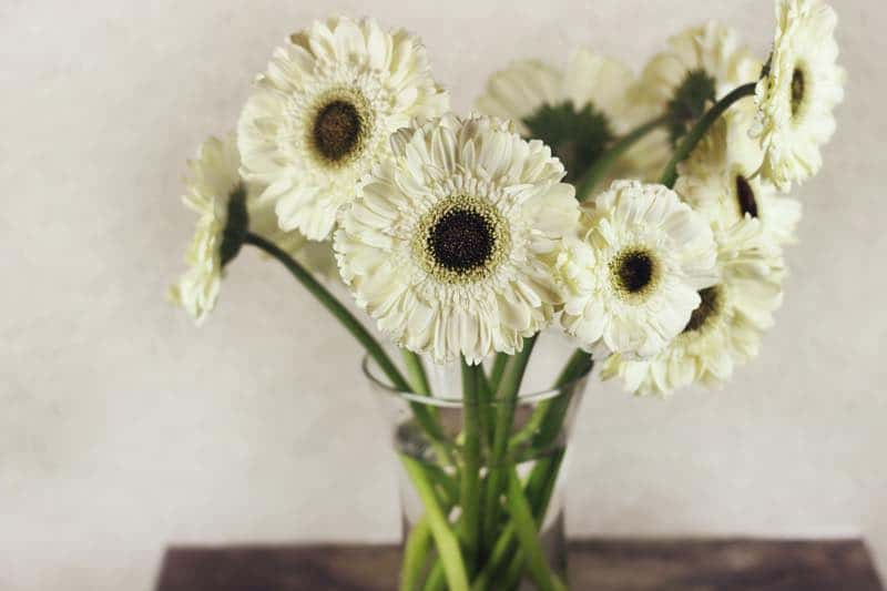 flowers for bedroom