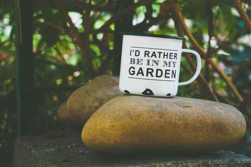 mug in secret garden