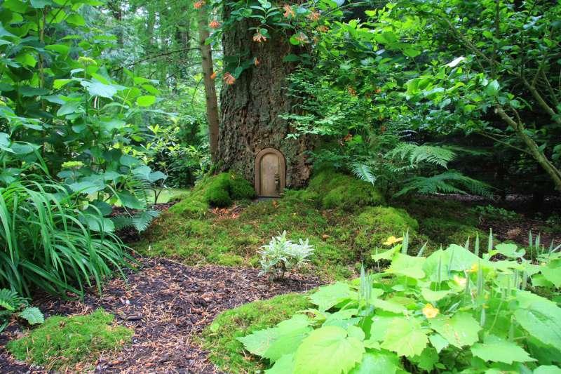 secret wonderland garden