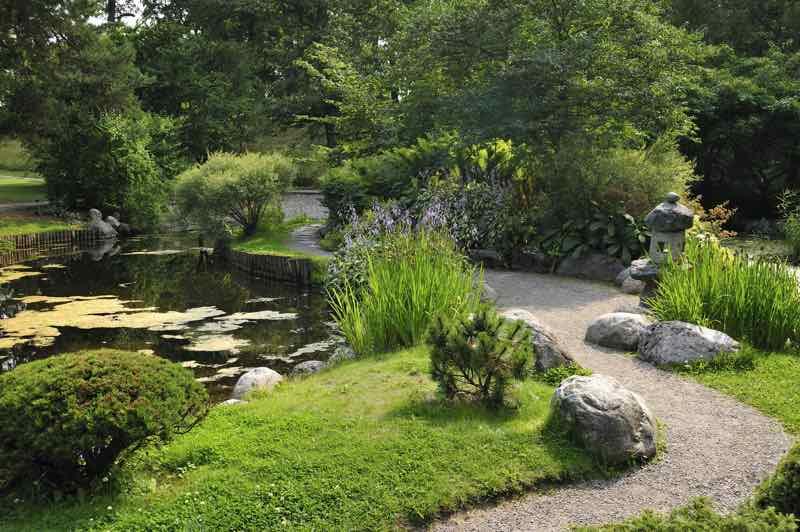 japanese dry garden design