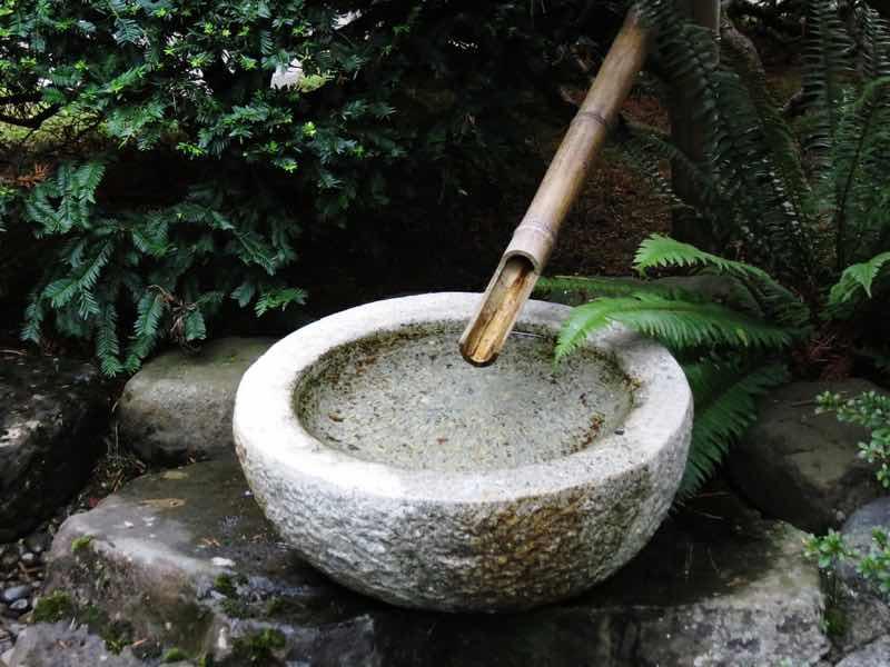 bamboo fountain Japanese garden