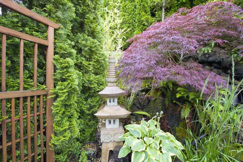 Japanese lantern pagoda