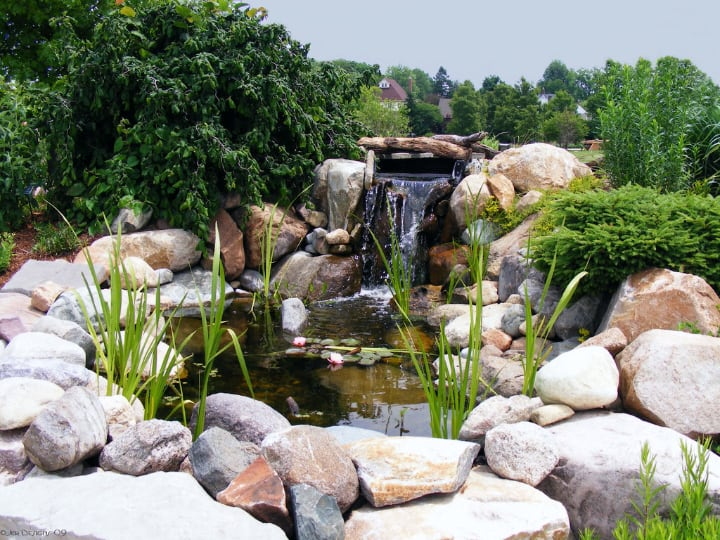 pond waterfall in the garden
