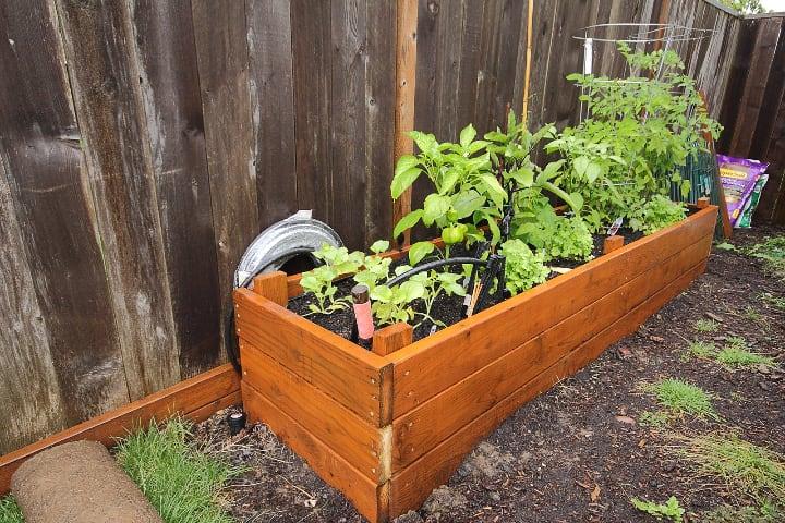 small raised garden bed