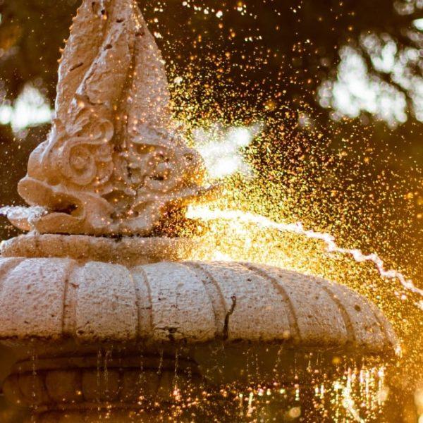 add garden water features to your garden