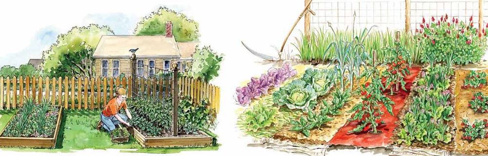 garden design overview planning
