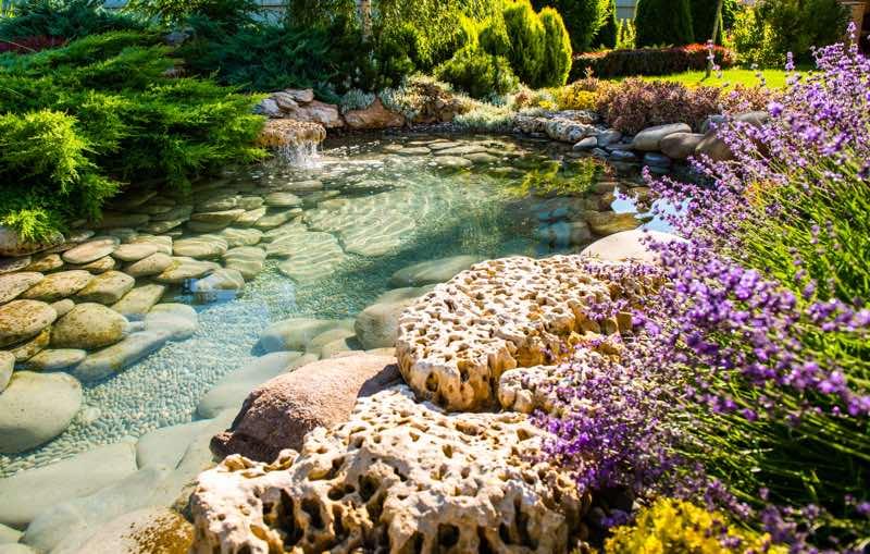rock garden landscaping idea