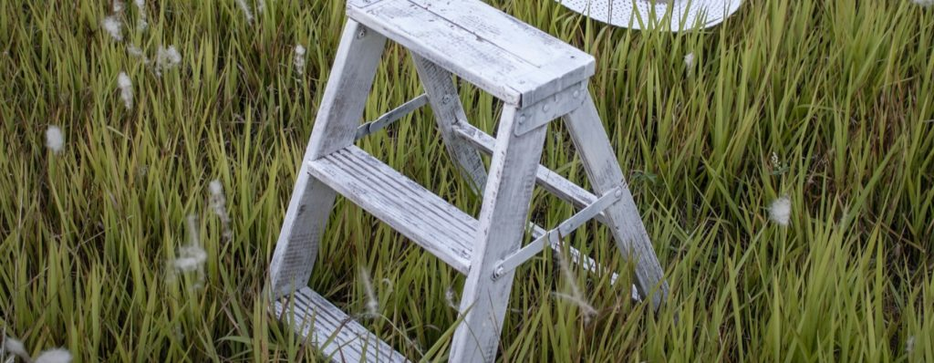 mini step ladder in the garden