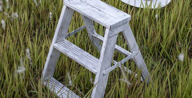 mini step ladder in the garden