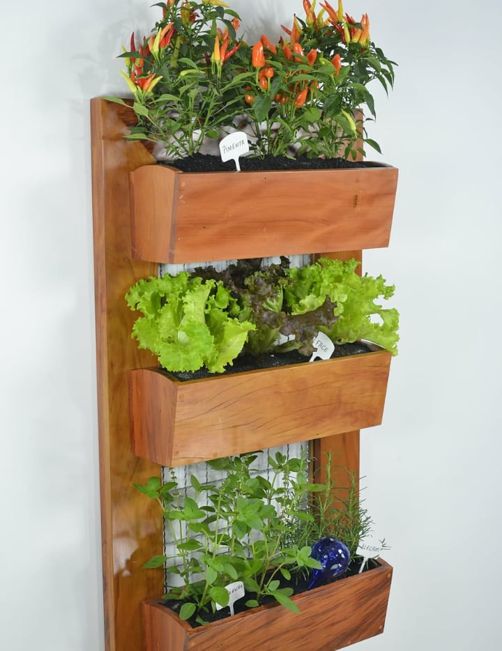 mini vertical garden