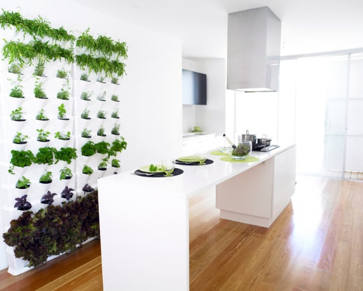 minimalist indoor wall vertical garden