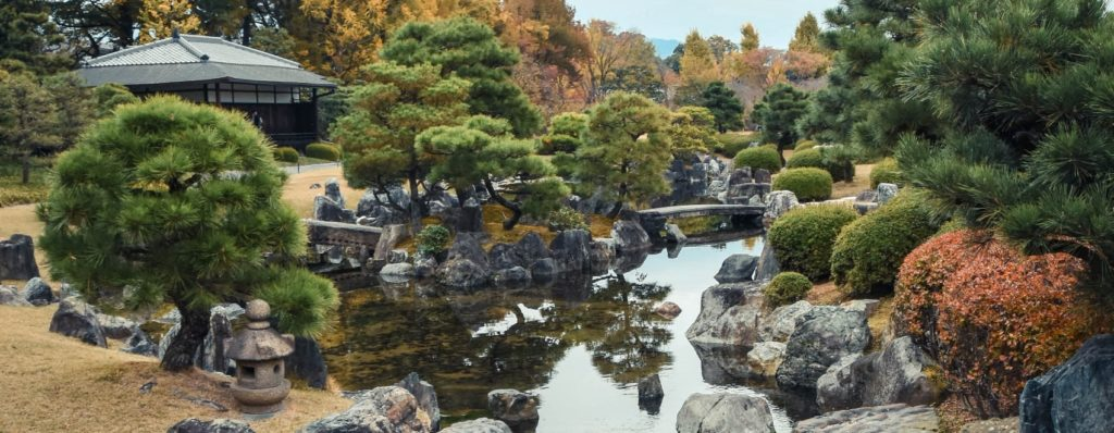 relaxing rock garden pond