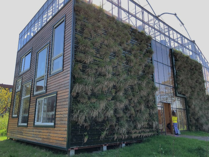 tiny house outdoor full wall vertical garden