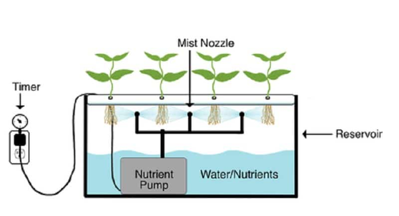 aeroponics-how-it-works