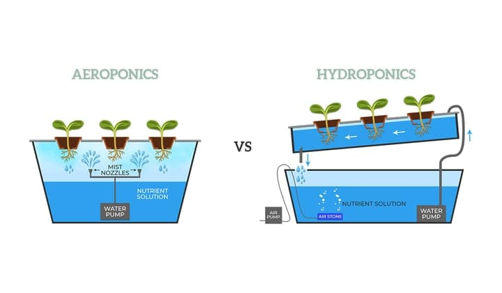 aeroponics versus hydroponics diagram