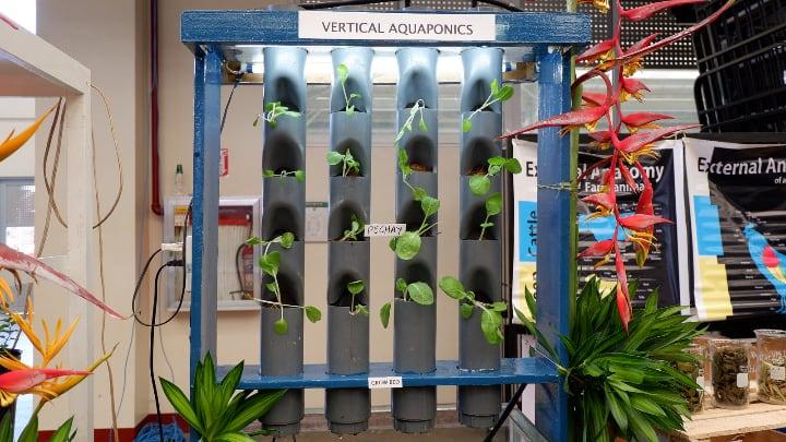 aquaponics need a lot of electricity