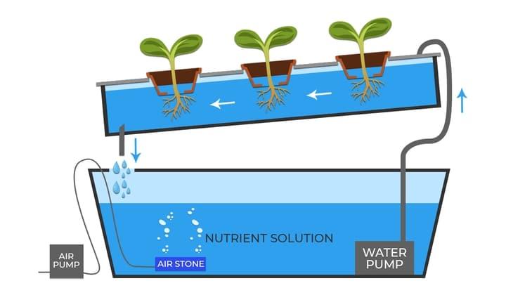 aquaponics ntf nutrient film technique system
