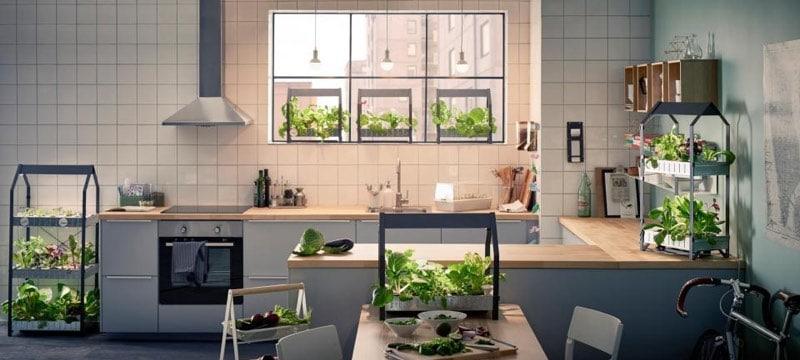 indoor hydropnic garden at home examples