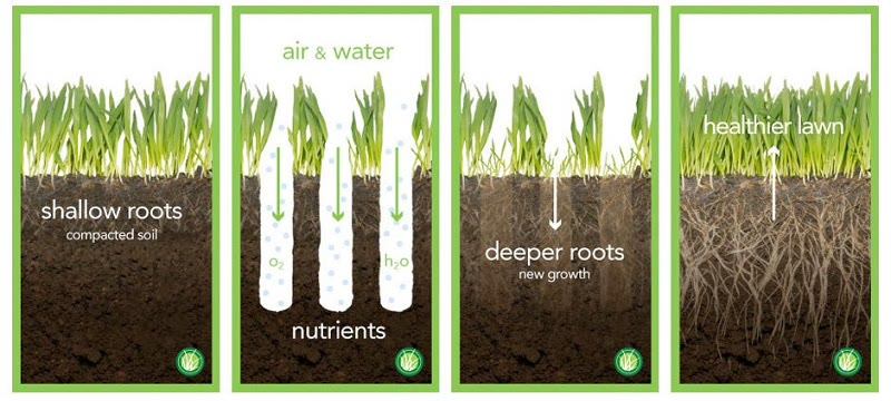 lawn aeration explained