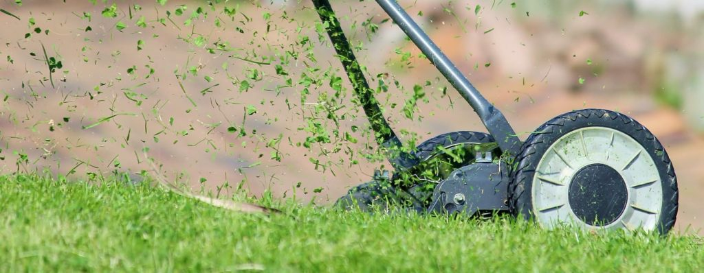 lawn aerator in action