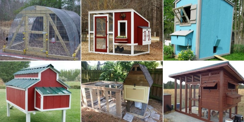 chicken coop plans ideas diy