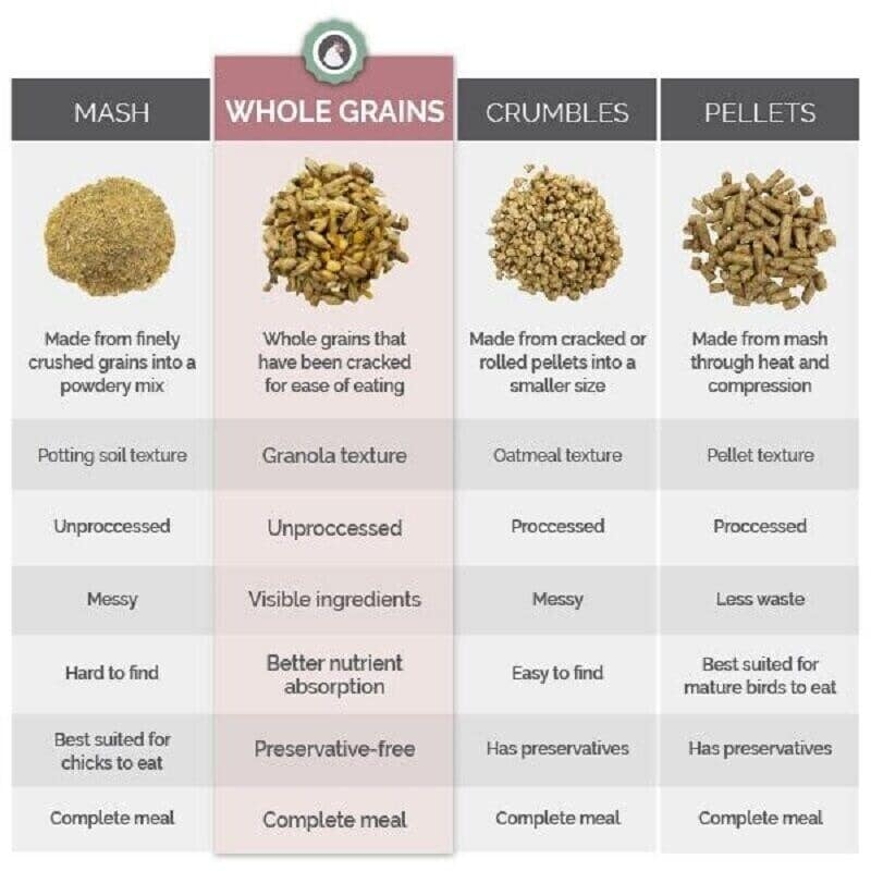 chicken feed types