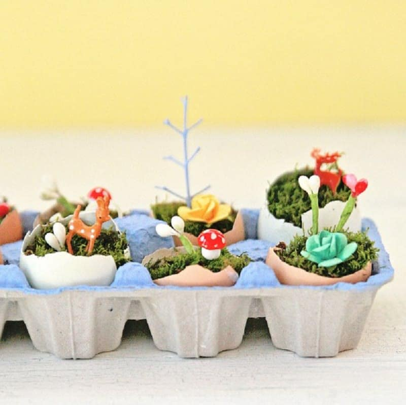 eggshell terrarium idea