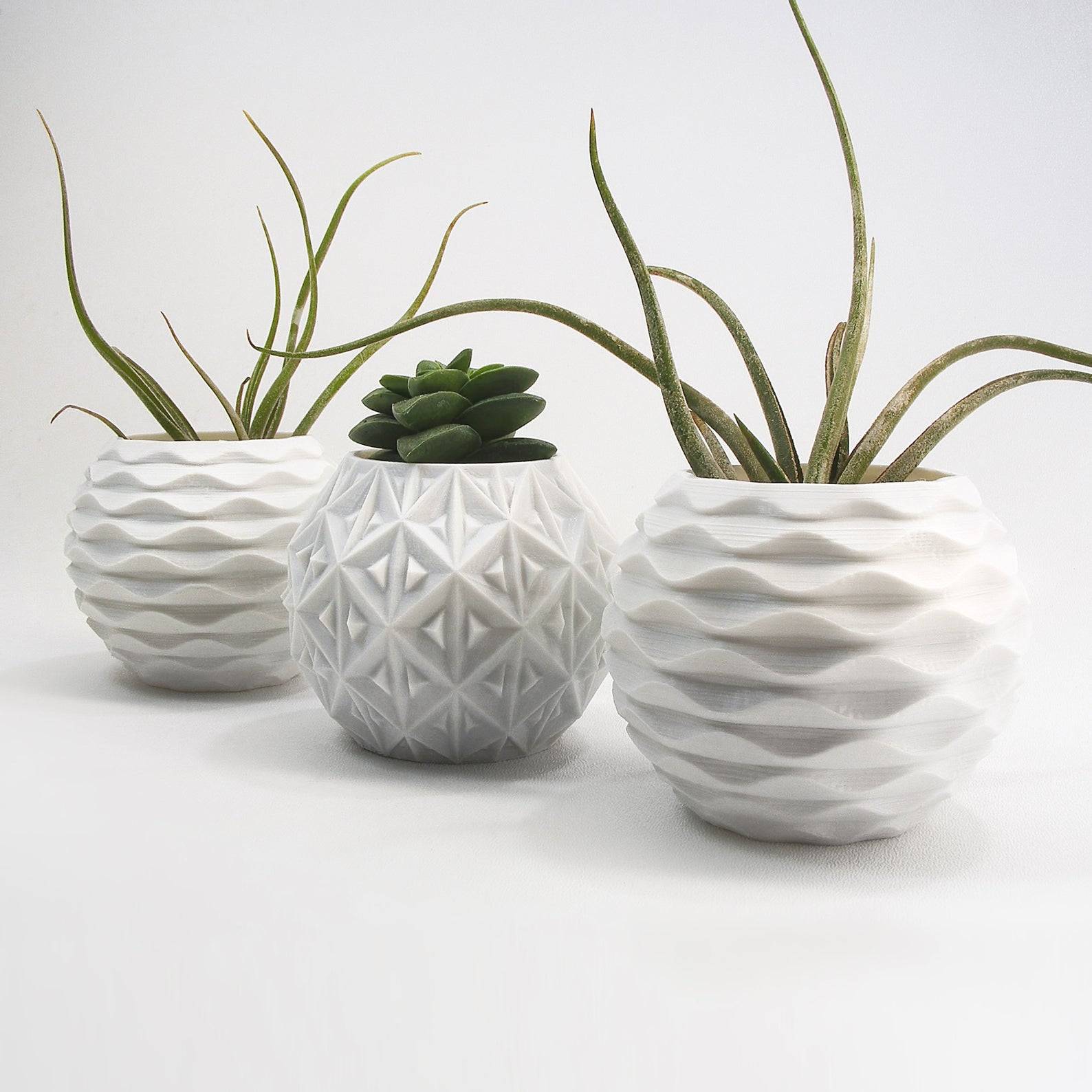 feng sui plant pot japanese