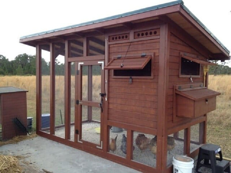 palace chicken coop