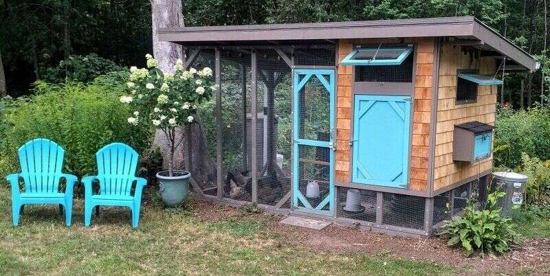 stylish chicken coop plan