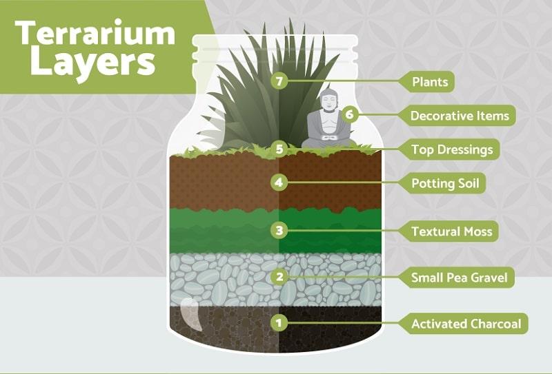 terrarium definition meaning