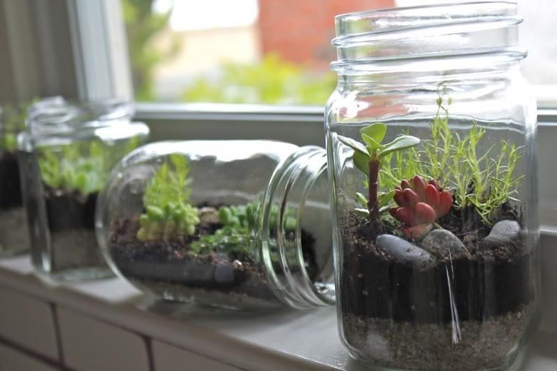 terrarium ideas jars