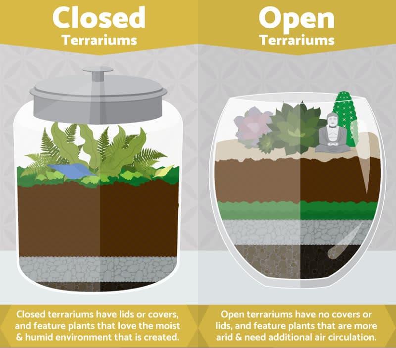 terrarium open vs sealed