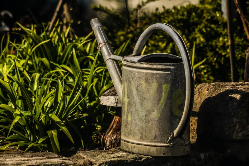watering can for flowers