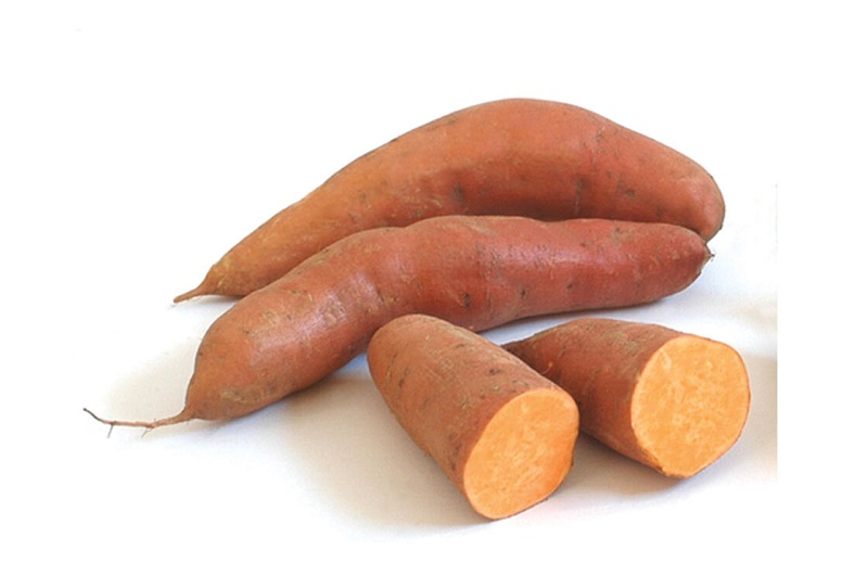 beauregard sweet potato