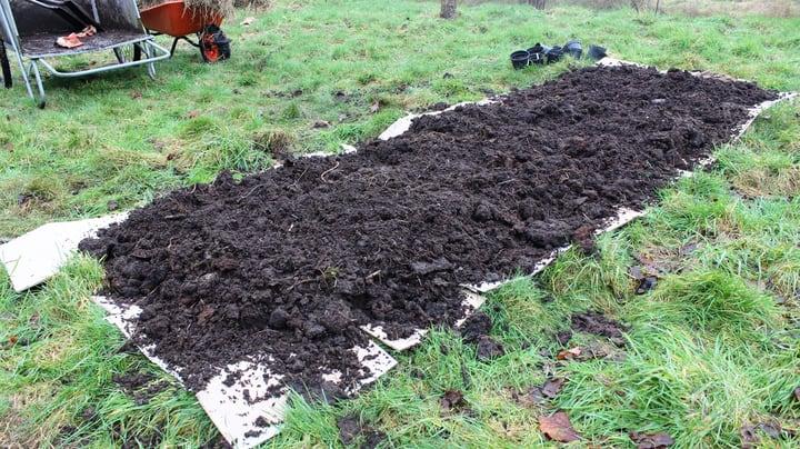 choosing soil for a raised garden beds
