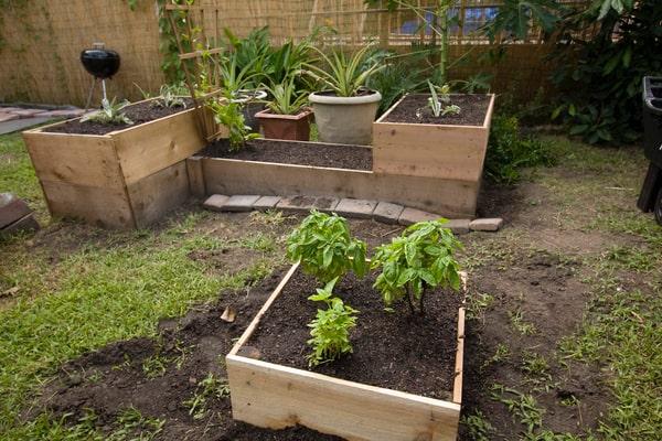 different raised garden beds