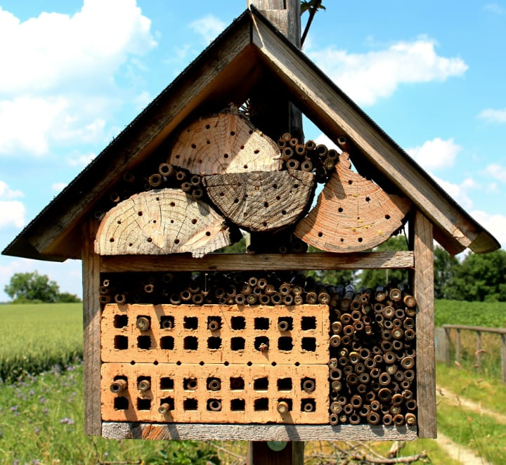 bee house with roof