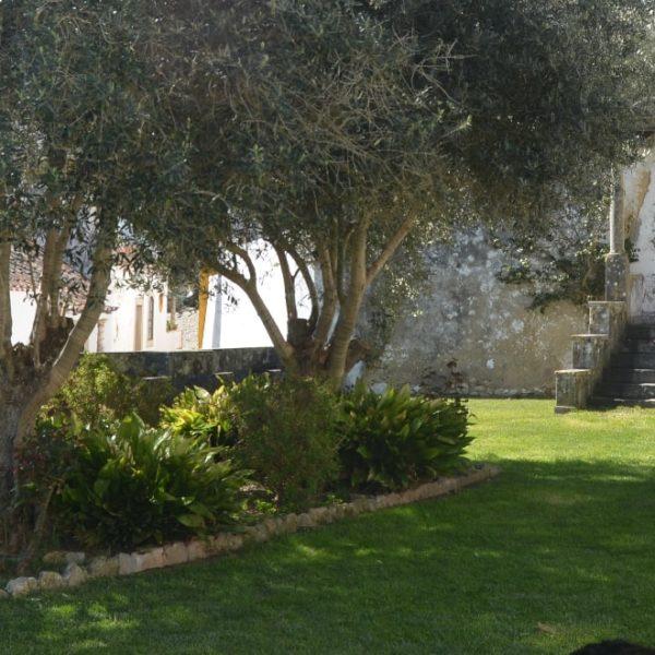 front yard shade gardening