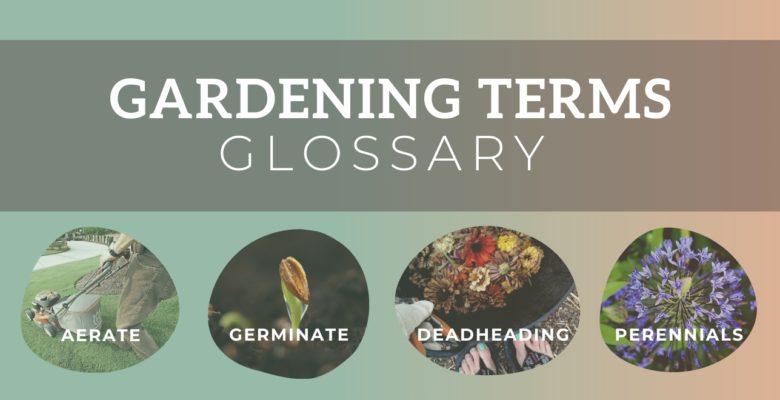 garden terms glossary