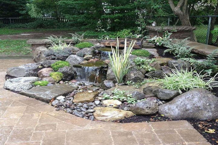 garden with rocks and flowers