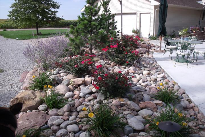garden with rocks