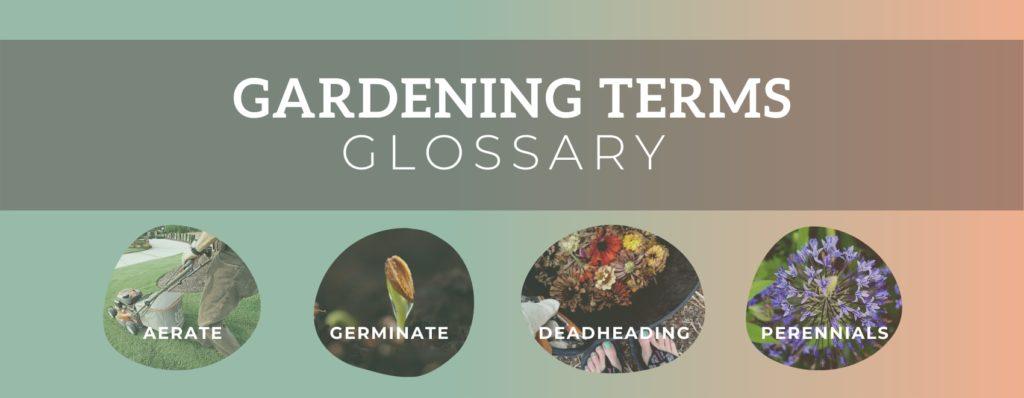 gardening terms glossary