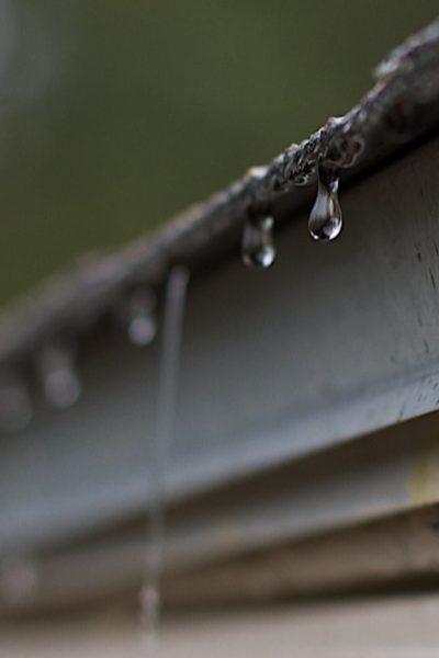 harvesting rain water through gutter