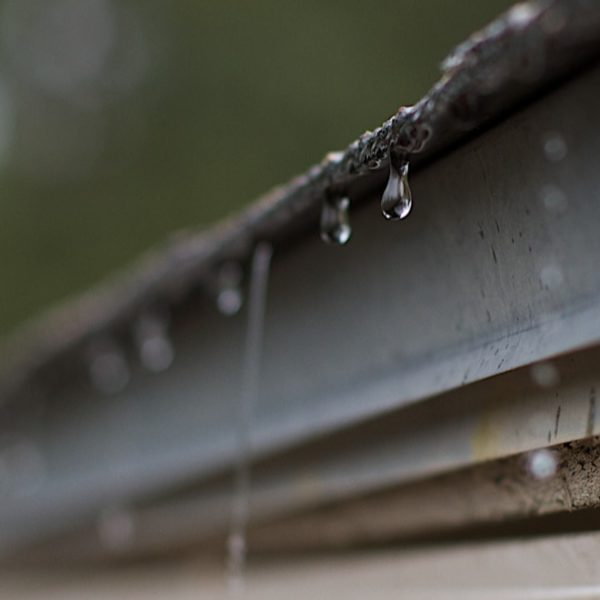 harvesting rain water through gutter